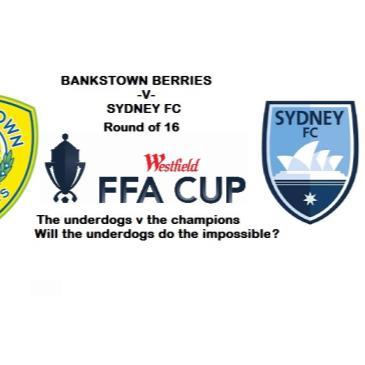 Bankstown Berries FC v Sydney FC